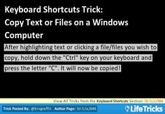 Copy Text or Files on a Windows Computer