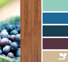 very earthy  Note: brighter teal with wenge furniture?or combo of all colours to make it work