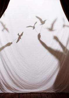 DIY: Bird Shadow Puppets
