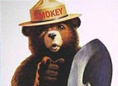 Smokey the Bear is a mascot of the U.S. Forest Service created to educate the public about the dangers of forest fires. Smokey has been appearing in animation for more than fifty years. In 1956, he made a cameo appearance in the Walt Disney short film In the Bag. In 1966, Rankin/Bass produced an animated TV special for ABC, named The Ballad of Smokey the Bear. During the 1969-70 TV season, Rankin/Bass also produced a weekly Saturday Morning series, The Smokey the Bear Show.
