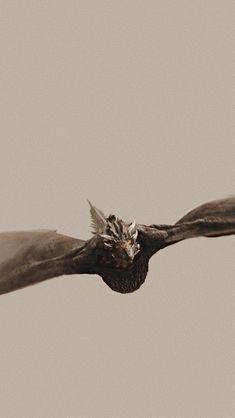 Got: Daenerys Targaryen – hande öztürk – # Öztürk … Got Dragons, Game Of Thrones Dragons, Got Game Of Thrones, Mother Of Dragons, Game Of Thrones Poster, Game Of Thrones Quotes, Daenerys Targaryen Aesthetic, Game Of Thrones Wallpaper, Animals