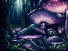 Image du Blog darkdreams.centerblog.net