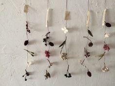 木の実 モービル - 草花とあそぶ   花音