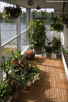 60 ways to turn your tiny balcony into an irresistible outdoor space 2019 page 25 Small Balcony Design, Small Balcony Garden, Small Balcony Decor, Balcony Plants, House Plants Decor, Terrace Design, Rooftop Garden, Indoor Window Garden, Small Balconies