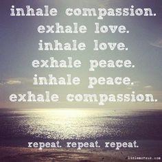 a meditation. a prayer.  #kombuchaguru #meditation Also check out: http://kombuchaguru.com