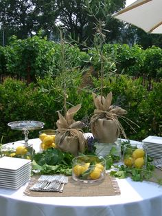 Olive Tree - Catering Table at a Napa Wedding I set up.. Pre-food