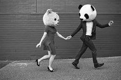 bear and panda love