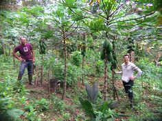 Interview: How to Cultivate a Career in Regenerative Agriculture