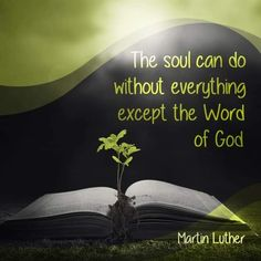 The Soul Needs the Word of God Christian Life, Christian Quotes, Christian Living, Martin Luther Quotes, Grace Alone, Uplifting Thoughts, Reformed Theology, Sisters In Christ, Walk By Faith