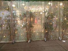 Flores,luces, entramos al recinto de celebración de la boda.