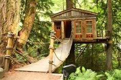 The Treehouse Point in Seattle, Washington.The complex is part treehouse hotel, part quaint event venue, part wilderness preserve. It is a curious mix of luxury and roughing it. The interiors of the treehouses are luxuriously designed with plush beds, heat and electricity.