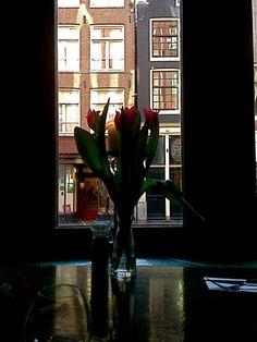 Tulpen en Amsterdam, bijna onlosmakelijk met elkaar verbonden #DuLac #Haarlemmerstraat http://www.facebook.com/haarlemmerbuurt pic.twitter.com/pdFmRcMIW8
