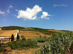 00_IMG_3325_Region de Bizerte