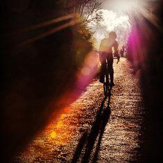 Out on the trail mountain biking MTB bike Road Cycling, Cycling Bikes, Mtb Bike, Bicycle, Road Bikes, Mountain Biking, Cool Pictures, Scenery, Adventure
