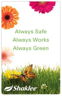 Independent Distributor for Shaklee products. Always Safe. Always Work.   Always Green.   #Shaklee #MarilynKvasnok   ➤ www.StarTeamUSA.net