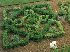 This is a Rosemary Verey garden, but the photo isn't sourced so I don't know where it's located.