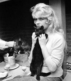 Miss Brigitte Bardot : Photos Hollywood Icons, Classic Hollywood, Old Hollywood, Hollywood Fashion, Hollywood Actresses, Fondation Brigitte Bardot, Bardot Brigitte, Photo Bb, Celebrities With Cats