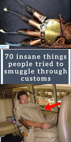 Thanks to the TSA Instagram account – we get to see some of the most insane items people have tried to smuggle through customs. What are some people thinking?! #awesome #amazing #facts #funny #humor #interesting #trending #viral #news #entertainment #memes #facts Animals And Pets, Cute Animals, Amazing Facts, Amazing Things, Girl Photography Poses, Inspiring Things, Cool Pins, Nature Wallpaper, Weird Facts