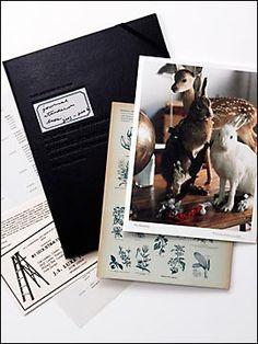 Naomi Hirabayashi journal standard luxe(2005-2006)