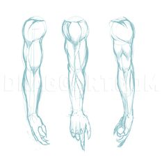 """Step Learn How to Draw Muscles FREE Step-by-Step Online Drawing Tutorials, Anatomy, People free step-by-step drawing tutorial will teach you in easy-to-draw-steps how to draw """"How to Draw Muscles"""" online. Human Anatomy Drawing, Human Figure Drawing, Figure Drawing Reference, Art Reference Poses, How To Draw Anatomy, Arm Drawing, Drawing Poses, Drawing Guide, Realistic Drawings"""