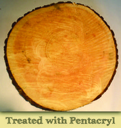 Wood slices treated with Pentacryl helps preserve the wood and prevent it from cracking over time.