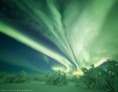 """""""Here in Inari, Finland, strong auroras appeared on Jan. 11th,"""" reports Rayann Elzein, who photographed this magnificent green outburst over the snowy Lapland"""