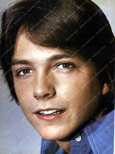 young David Cassidy pic dp-13892