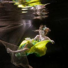 The depths below... Photographer Ming H2 Wu  #Greenery #Pantone #ColoroftheYear #blendimages