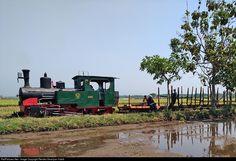 Net Photo: Kedawoeng 14 Untitled Orenstein & Koppel at Pasuruan, Indonesia by Rendra Swariyan Habib Trains, Train