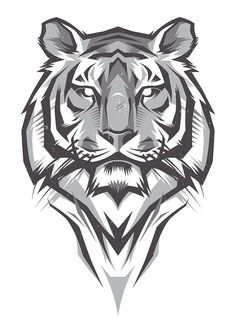 Shulyak Brothers - tiger illustrations: