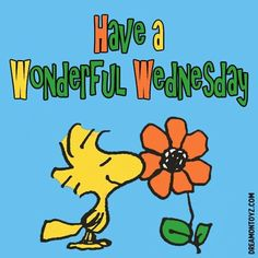 Have a wonderful Wednesday!