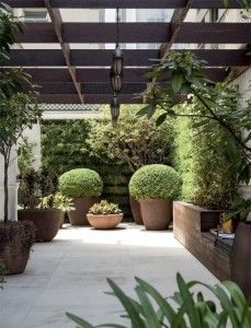 vasos com plantas na varanda