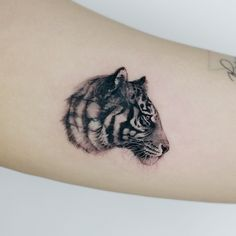 Cover-up Tiger head tattoo by @tattooist_doy