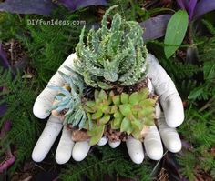 Fill the gloves with concrete and make a quaint planter to decorate your garden.