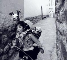 """""""Rápido"""" Cuzco - by gg"""