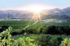 Temecula, Southern California's Wine Country