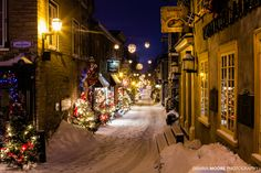 ***Christmas decorations (Rue du Petit Champlain, Lower Town, Quebec City, PQ) by Dawna Moore
