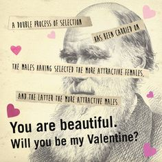 Beauty, Darwin, and V-Day.
