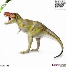 Carnegie Tyrannosaurus Rex Dinosaur Collectible - www.DinosaurToysSuperstore.com