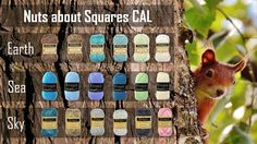 Nuts about Squares colorchart