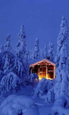 Bing fotos: Snowy spruce forest with log cabin in Riisitunturi National Park, Finland (© Jan Tove Johansson/Getty Images) Winter Szenen, Winter Time, Winter Christmas, Winter Cabin, Cozy Cabin, Christmas Trees, Merry Christmas, Cabin Christmas, Winter Coat