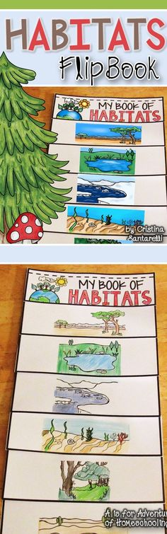 *Habitats   The Habitats flip book includes 5 differentiated versions of the flip book. One where students can trace the Habitats sentence, one where students can trace the Habitats word, one where students can write an animal of the habitat, one where students can write the animal and name of the habitat, and one blank. You decide which one students fill out!    Habitats flip booklet features six habitats: savannah, pond, polar, ocean, forest, and desert.