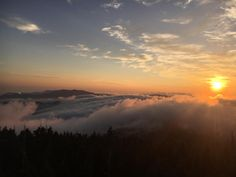 Sunrise View at 6643 feet Clingmans Dome is the highest point in the Great Smokey Mountains National Park || Click on the photo to discover the most incredible destinations with us :)