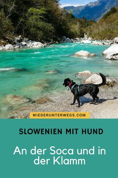 These colors are REAL: At the Soca in Slovenia with dog. When hiking and glamping. Bell Tent Camping, Camping And Hiking, Camping Bled, Van Camping, Glamping, Camping Lanterns, Europe Travel Guide, Horseback Riding, Rafting
