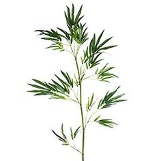 stick 6 of these in a large vase