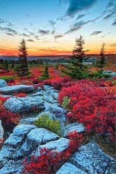 Bear+Rocks,+West+Virginia.jpg (425×640)