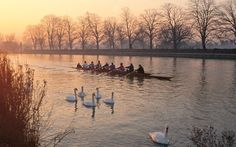 Rowing on the River Thames in Oxford, England. Photo copyrighted by Chris Andrews.