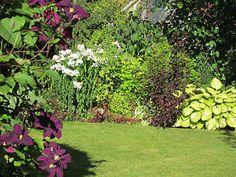 Konnadonna - kotona ja puutarhassa