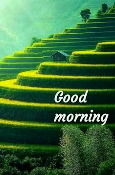 Good Morning Images For Whatsapp Good Morning Kiss Images, Beautiful Morning Messages, Good Morning God Quotes, Inspirational Good Morning Messages, Good Morning Beautiful Pictures, Latest Good Morning Images, Happy Sunday Quotes, Good Morning Gif, Good Morning Greetings