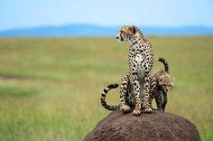 Christian Baillet vous emmène découvrir l'Afrique  http://voyage-photographique.com/christian-baillet/